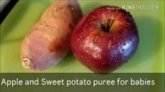 Baby food recipes archives twistinory homemade nutritious baby food apple and sweet potato puree forumfinder Gallery
